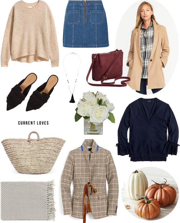 current-loves-fall-neutral